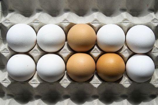 冷蔵庫に入れていた卵をすばやく室温に戻す方法