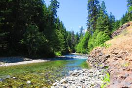 川や湖の原水を飲んではいけない