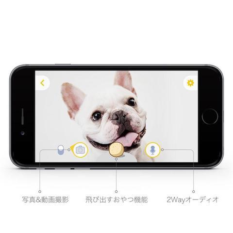 img_product_2-japanese_1024x1024