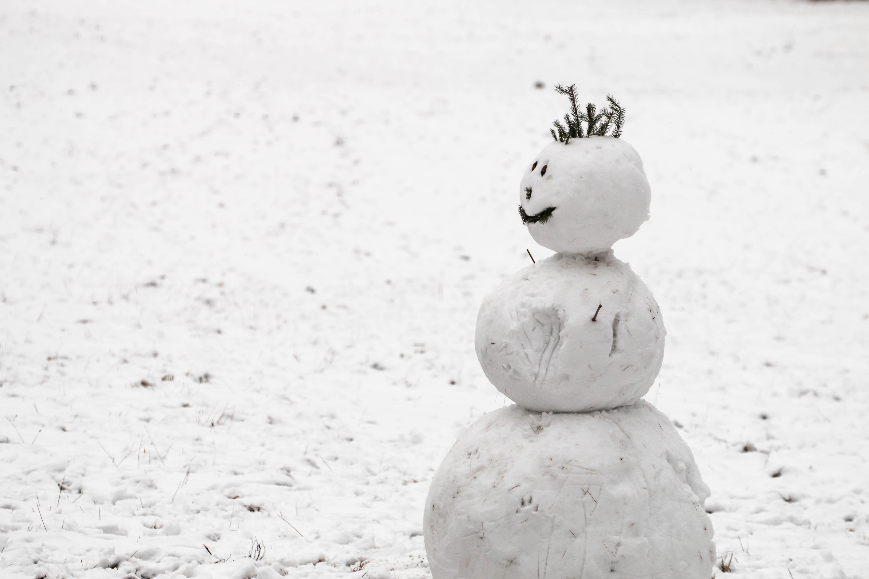 科学に基づく、雪だるまを作る4つのコツ。 ポイントは雪の種類と大きさだ