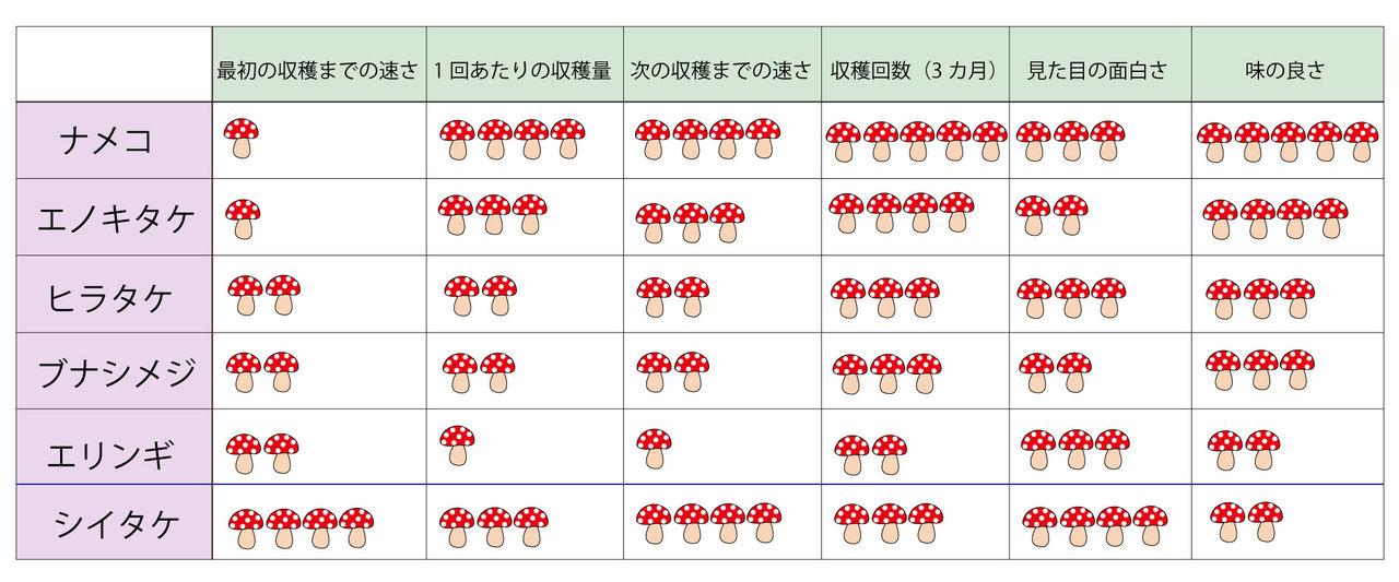 キノコ栽培キット5種比較一覧