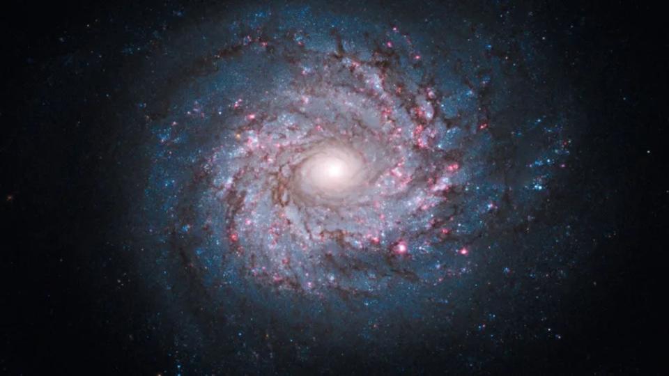 NASAの宇宙映像や画像を無料でダウンロードする方法 | ライフハッカー[日本版]