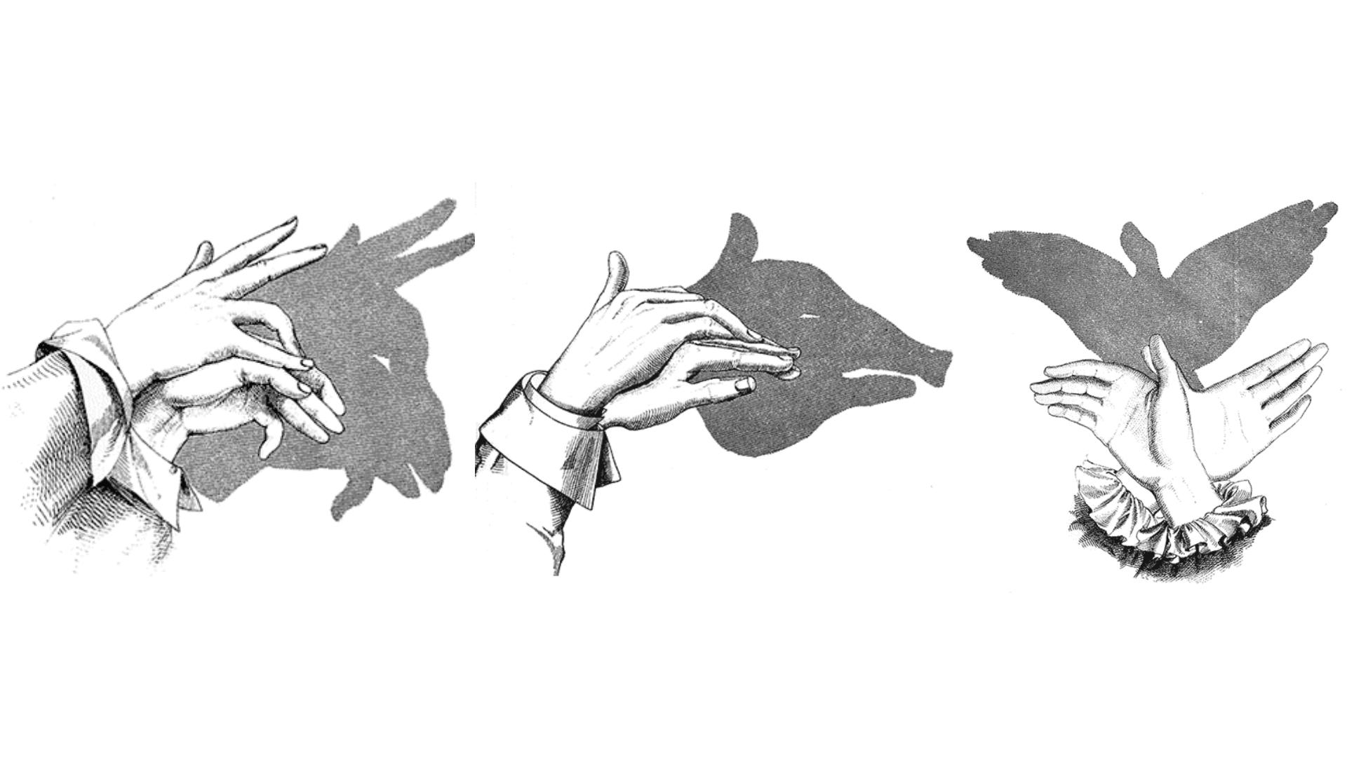 子どもと一緒にできる、手を使った影絵7選とやり方 | ライフハッカー ...