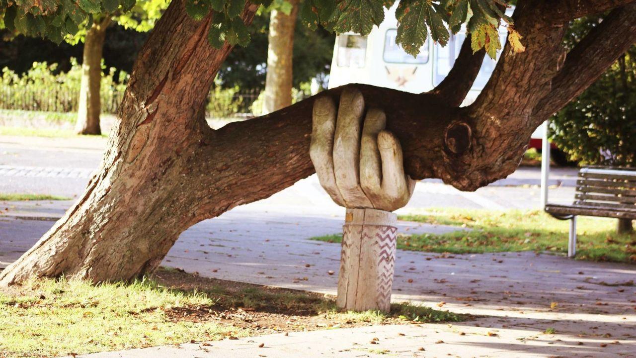 太い木の幹を下から支える手