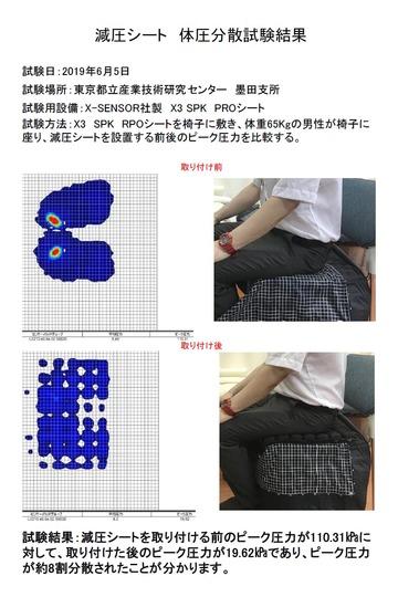 cushion_report