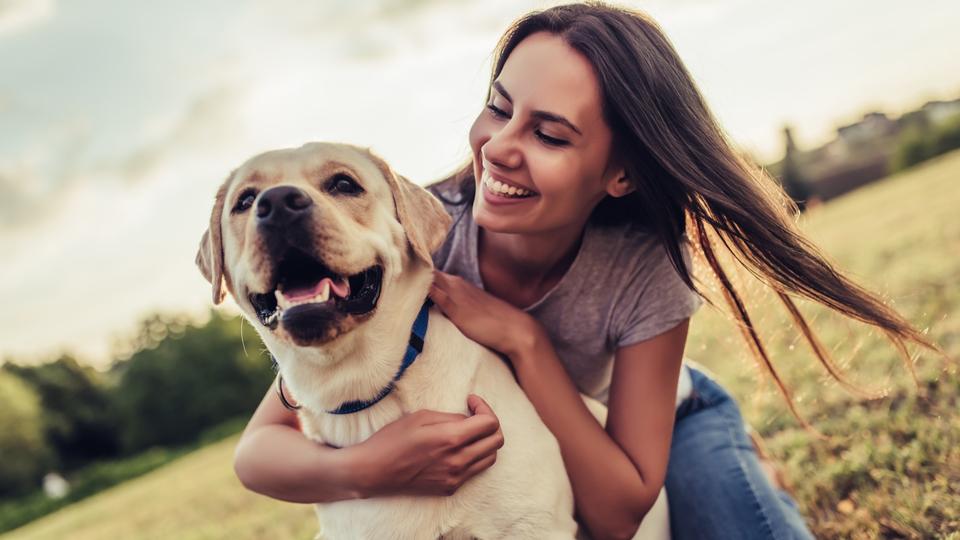 犬を飼うとあらゆる病気による死亡率が21%下がる|研究結果
