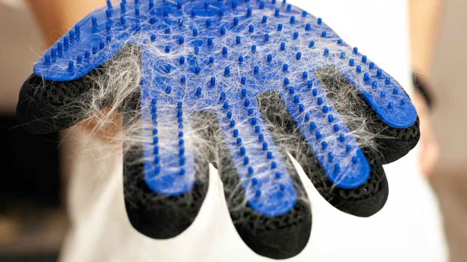ゴム手袋についた猫の毛