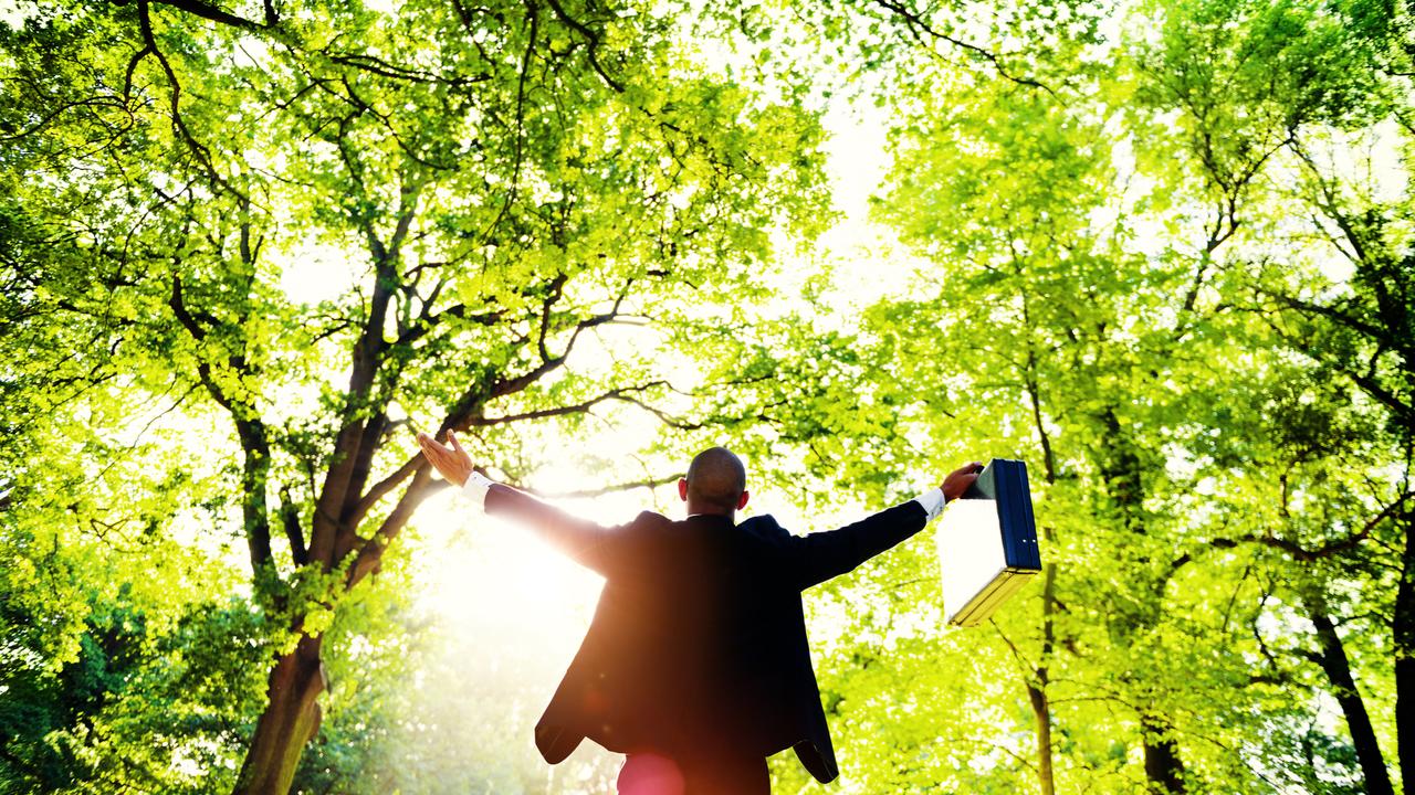 木々の下で両手を広げるビジネスマン