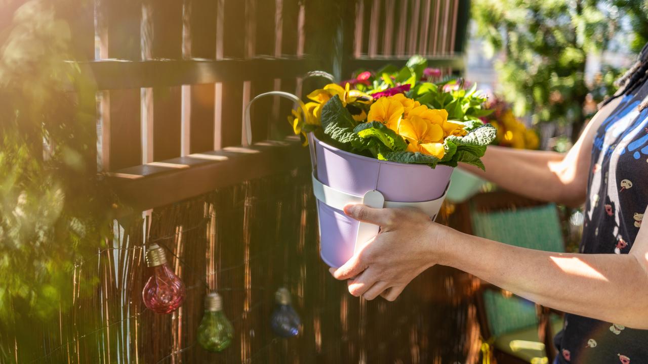 ベランダに花を飾るところ