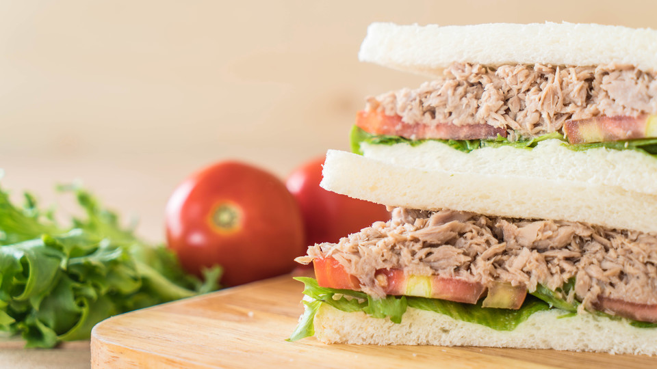 Photo of How to make delicious tuna sandwiches and recipes