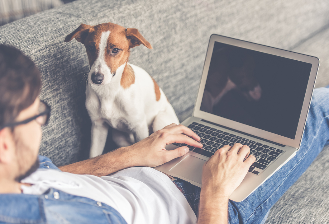 在宅勤務をする男性と犬