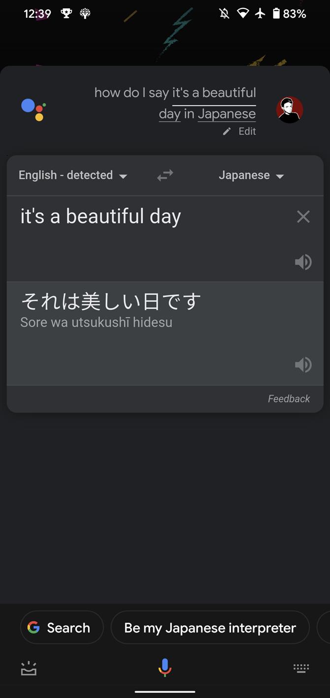 03b-Google-Assistant-Translate