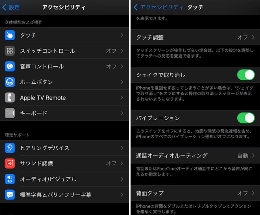 iphone210111_2