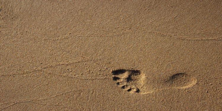 足跡のイメージ