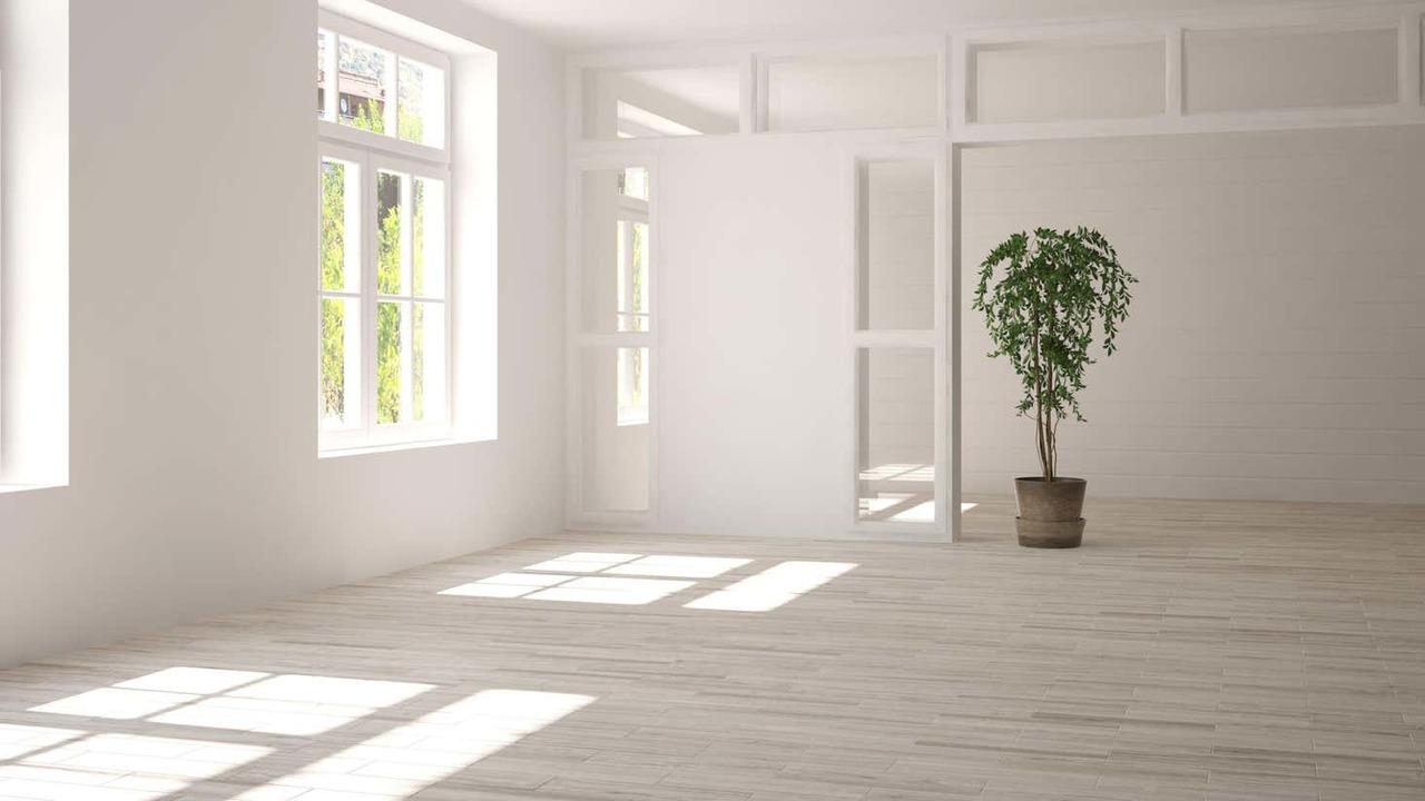 観葉植物だけの部屋