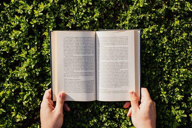 緑の葉の上で開いた本