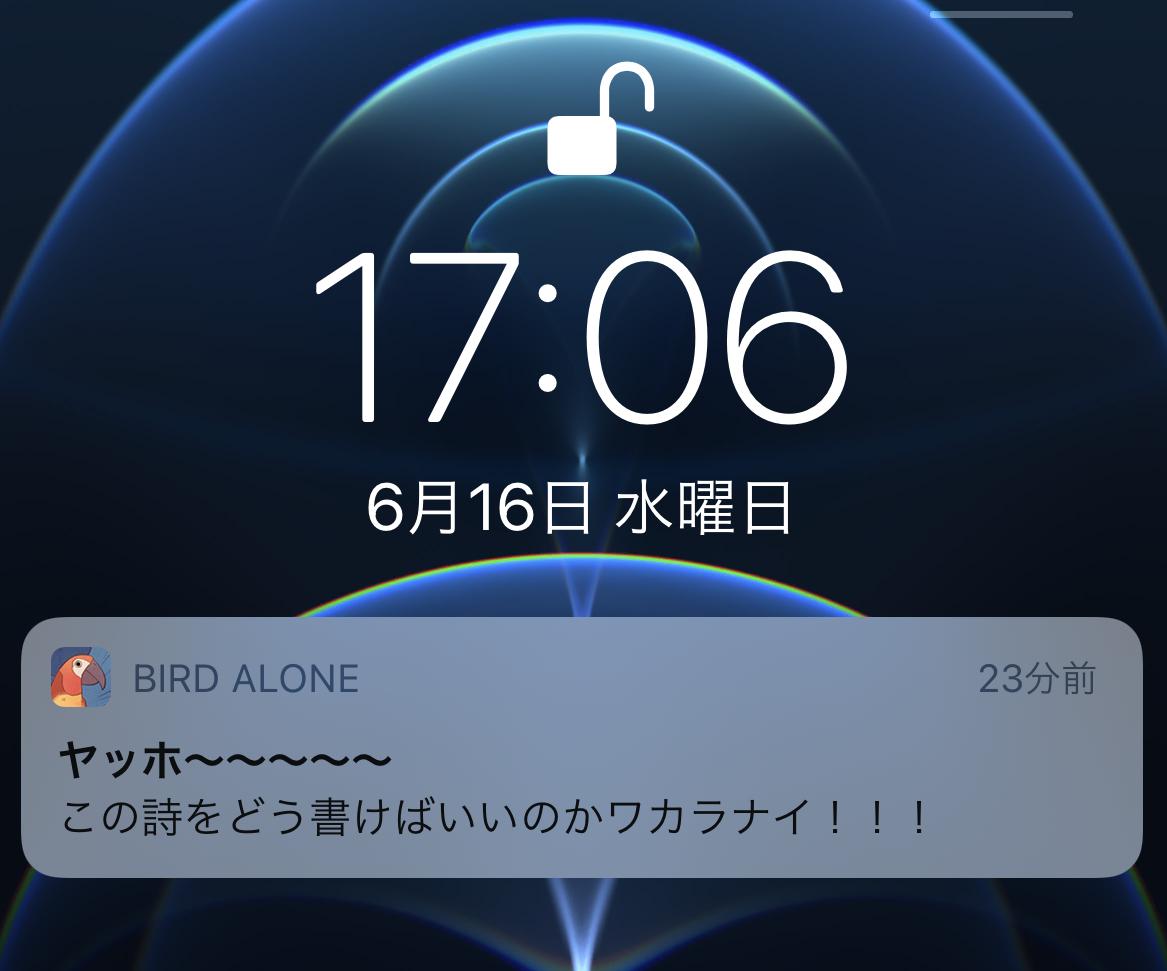 bird-alone_09