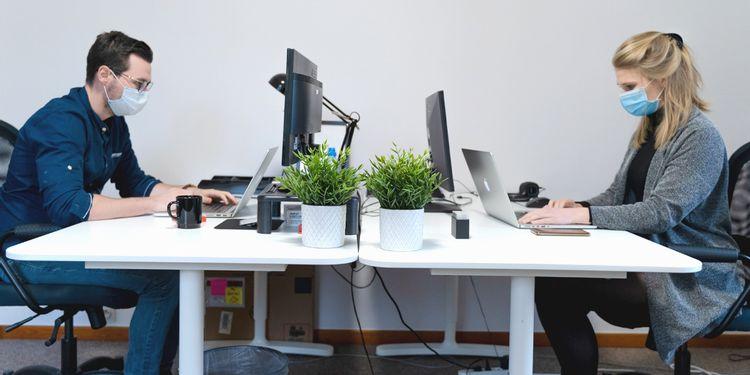 マスクをして向かい合ってパソコンで作業する2人