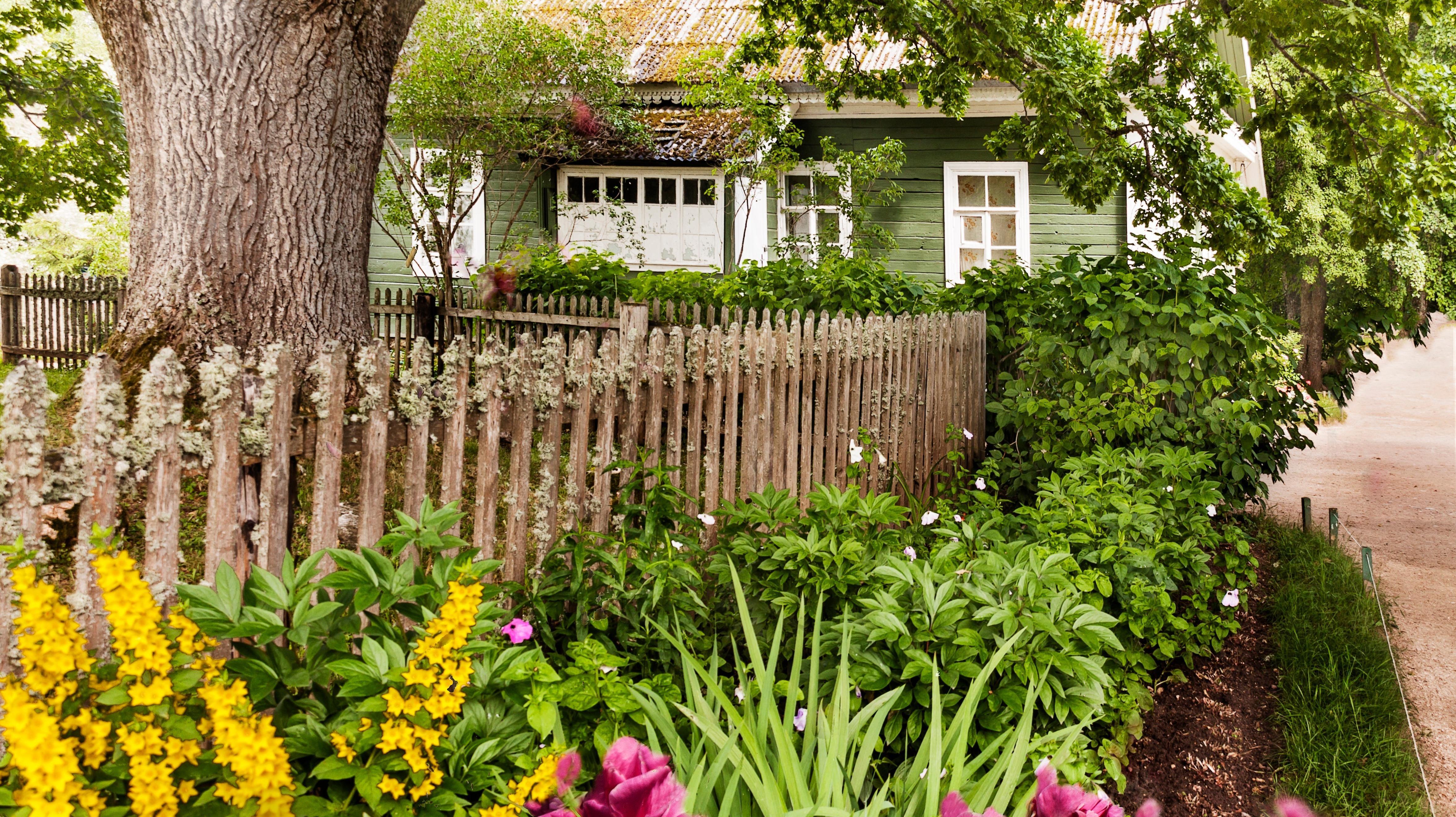庭先に木を植える方法・・・