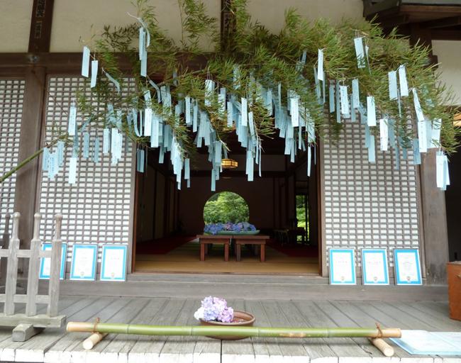 20130703tuki_11.jpg