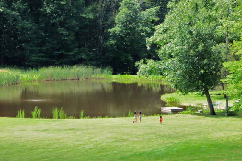ニューヨーク郊外の森で過ごす、静かな夏休み。
