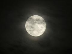 旧正月はいつも新月。 月のパワーをうけて新たな年を迎える