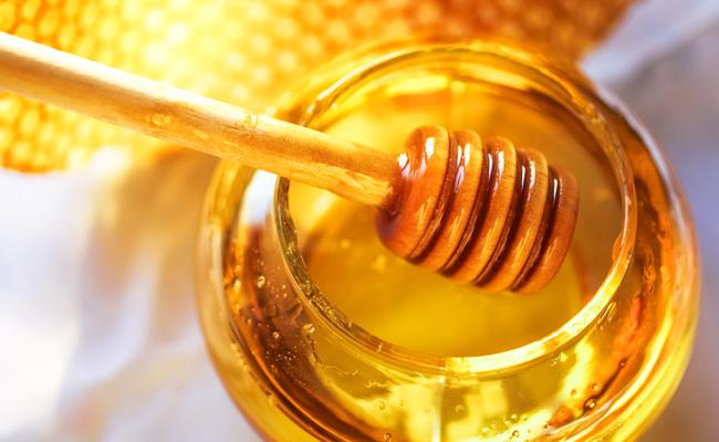 20140418_bees_1.jpg