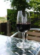 青空の下で、ワイン70種類を飲みくらべ!