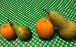 旬の果物と野菜を食べよう。小学生で始まったプロジェクト