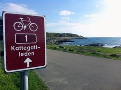 海からの風が気持ちいい、300キロを超えるサイクリング街道