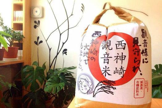 20151016_rice2.jpg