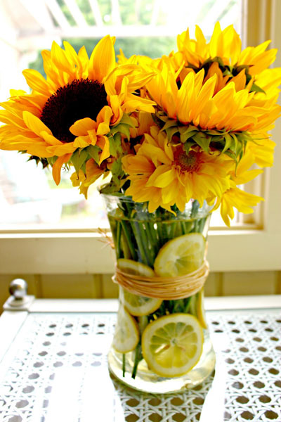 20150618_sunflower_4.jpg