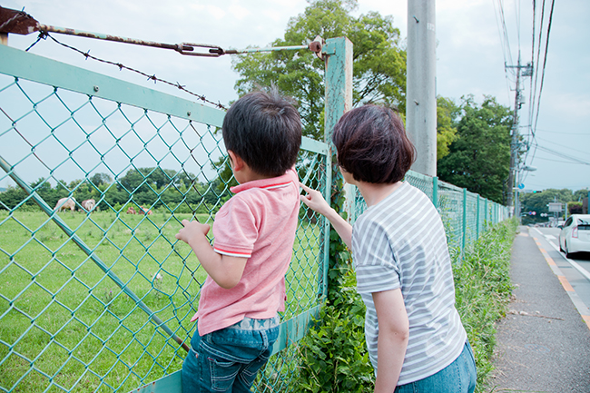 201507_mitsui_usi_fence.jpg
