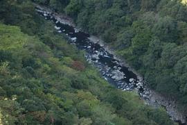 オーガニック最先端・綾町の自然と調和した暮らしかた
