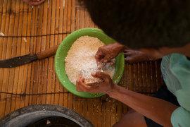低温圧搾でしぼり出す。 ココナッツオイルの伝統的な作り方レポート(2)