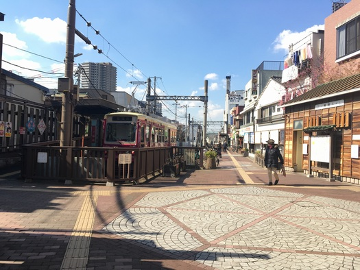 170226_zushineko_1.jpg