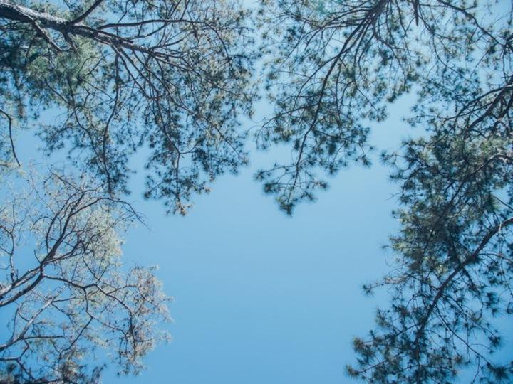 人生の冬は誰にでもある。外に結果を求めず、内側を豊かに #ごきげんな私を作る