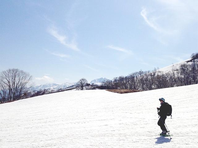 nozaki_04_zen.jpg