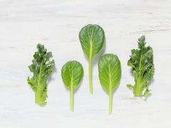 酸っぱいもので効率アップ。鉄の上手なとり方 #ポジティブ栄養学