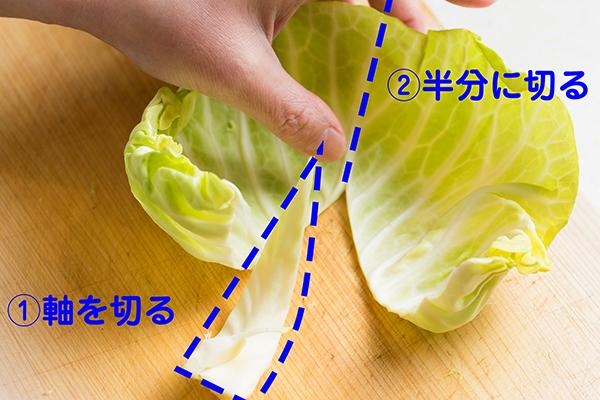 170508_fuwafuwa_cabbage_02.jpg