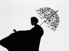ロイヤルファミリー愛用の傘に日本限定デザインが誕生