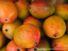 いまが旬! とろける甘さ、ハワイの絶品マンゴー