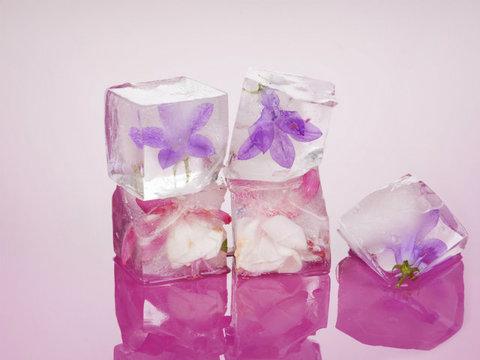 ひんやり冷たく心地いい。凍らせた花のエキスで肌を引き締める