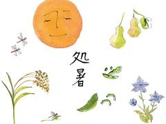 処暑の日からの過ごし方:早寝早起きで体を整え、旧暦七夕に願いをかけて