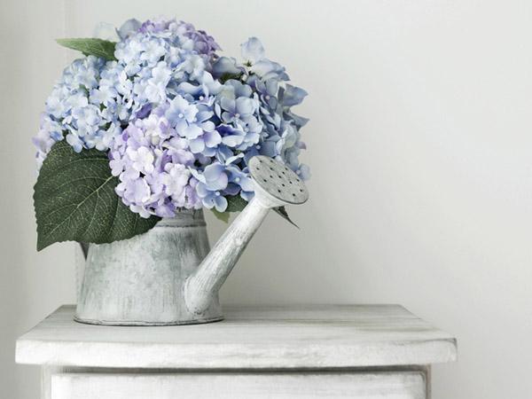 170907_flower_top_04.jpg