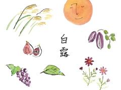 白露の日からの過ごし方:冷えに注意、月夜を楽しみ、体も心も秋へシフト