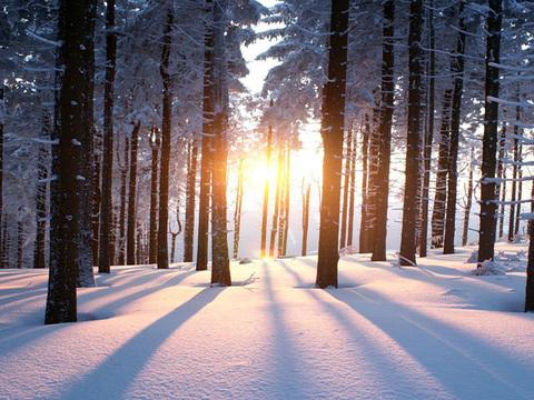 今話題のデンマークの「ヒュッゲ」って何? 冬を幸せに過ごせる実践方法6