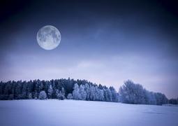 新年最初の満月はスーパームーン! 見頃はいつ? 輝く月に願いをかけて