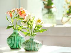 冬こそお部屋に飾りたい、花やグリーンを賢く楽しむアイディア6選