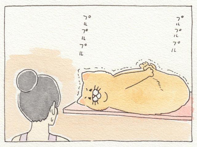 17_neko_yoga4_1.jpg